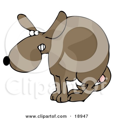 Clipart Illustration of a Scared Dog At The Vets Office, Cowering With His Tail Tucked Between His Legs, Protecting His Testicles Before Getting Neutered by djart