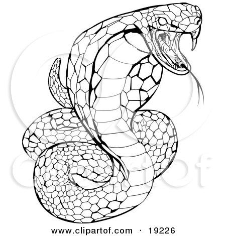 Clipart Illustration of a Striking Venomous Cobra Snake by AtStockIllustration