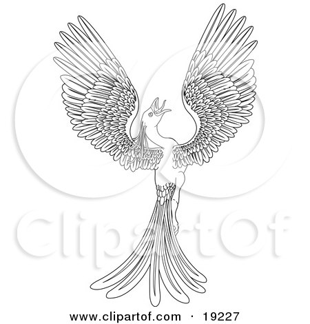 Clipart Illustration of a Black and White Coloring Page of a Magical Flying Phoenix Bird by AtStockIllustration