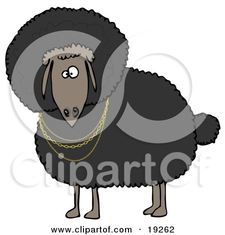 Clipart Illustration of a Black Sheep Wearing Golden Necklaces and Looking Outwards by djart
