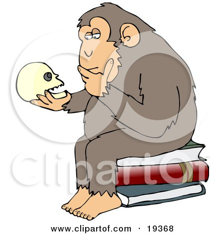 """Wise Monkey Holding And Gazing At A Human Skull, Pondering His Own Existance, A Parody Of Hugo Rheinhold's """"Philosophizing Ape"""" Sculpture That Was Created In 1892 Posters, Art Prints"""