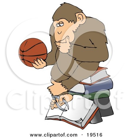 Chimp In Thought, Rubbing His Chin, Sitting On Top Of A Stack Of Books And Staring At A Basketball Posters, Art Prints