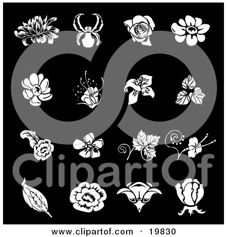 Clipart Illustration of a Collection Of White Iris, Rose, Daisy And Tulip Flower Icons Over A Black Background by AtStockIllustration