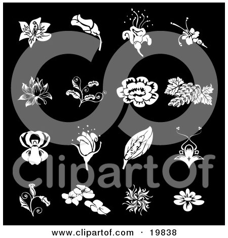 Clipart Illustration of a Collection Of White Rose, Grapes, Dogwood And Iris Flower Icons Over A Black Background by AtStockIllustration