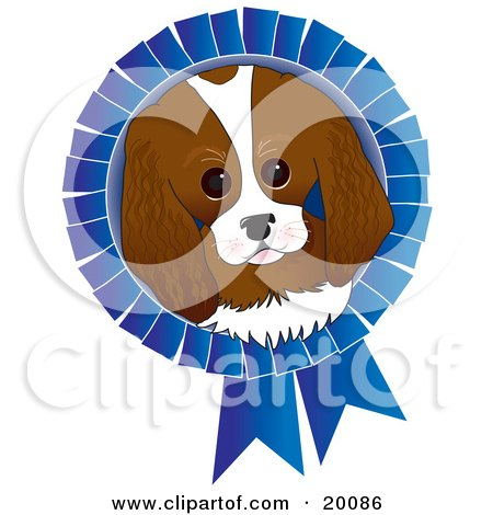 Clipart Illustration of an Adorable King Charles Spaniel Dog Face On A Blue Prize Ribbon For A Dog Show by Maria Bell