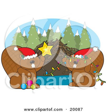 Clipart Illustration of a Cute Pair Of Brown Beavers Wearing Santa Hats, Decorating Their Dam With Christmas Lights, Baubles And A Star On A Snowy Winter Day by Maria Bell