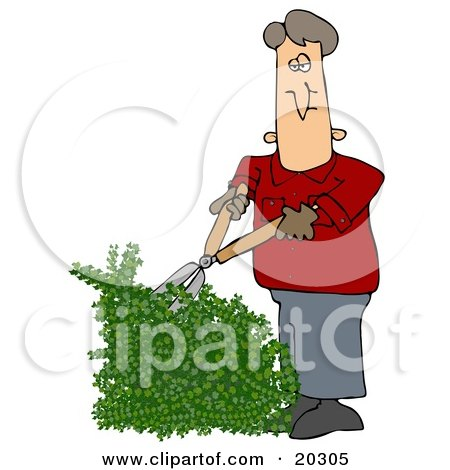Clipart Illustration of a White Guy Using Hedge Trimmers To Cut A Green Hedge While Doing Yard Work by djart