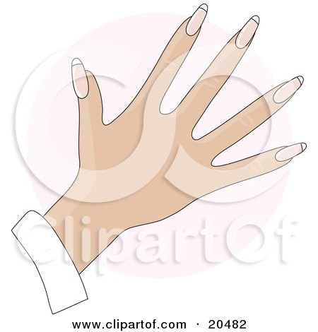 Clipart Illustration of a Woman's Hand With Rounded Gel Acrylic French Tip Fingernails After A Manicure, Over A Pink Circle by Maria Bell