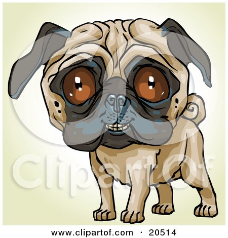 Clipart Illustration of a Friendly Pug Dog Looking Outwards by Tonis Pan