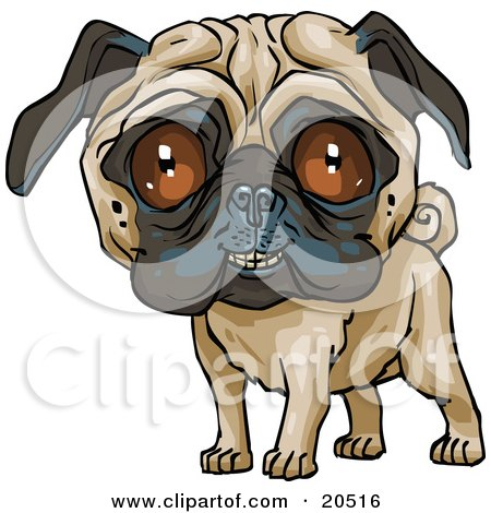 Clipart Illustration of a Cute Pug Dog Grinning At The Viewer by Tonis Pan