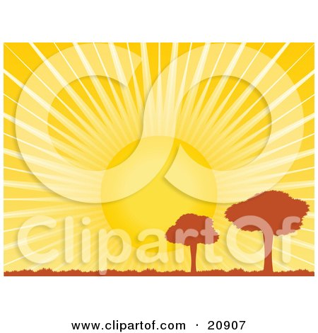 Clipart Illustration of Two Silhouetted Meadow Trees Under A Bright Sun With Bright Rays Of Light by elaineitalia