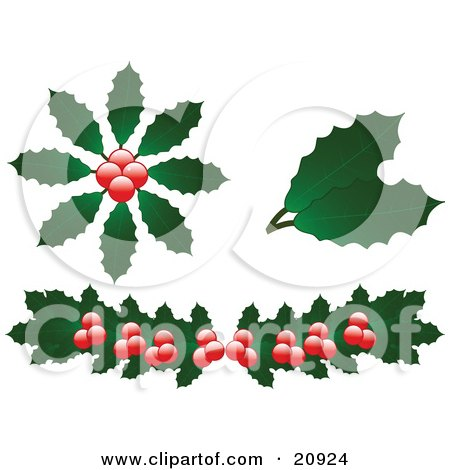 Clipart Illustration of a Collection Of Christmas Holly Leaves And Berries Over A White Background by elaineitalia