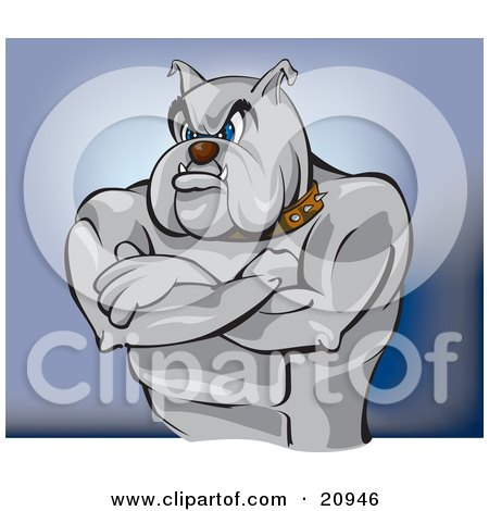 Clipart Picture of a Tough Bulldog Bouncer Or Guard Standing With His Muscular Arms Crossed by Paulo Resende
