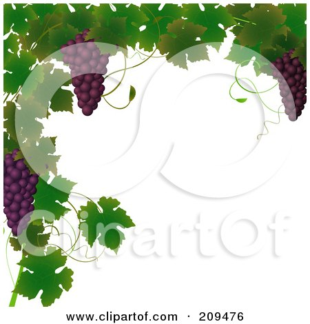 Royalty-Free (RF) Clipart Illustration of a Border Of Grape Vines And Purple Grapes by elaineitalia