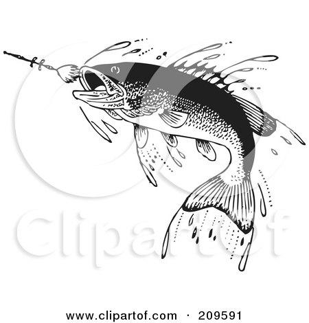Retro Black And White Fish