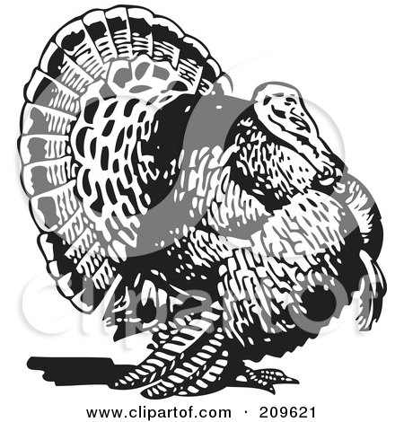 Royalty-Free (RF) Clipart Illustration of a Retro Black And White Thanksgiving Turkey Bird by BestVector