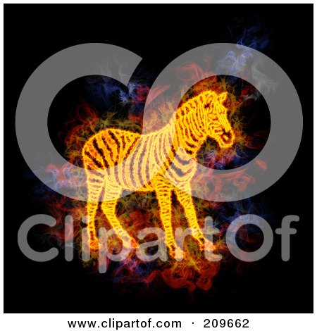 Royalty-Free (RF) Clipart Illustration of a Blazing Zebra by Michael Schmeling