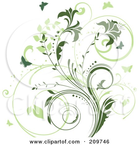 Royalty-Free (RF) Clipart Illustration of a Two Toned Green Vine And Butterfly Background On White by KJ Pargeter