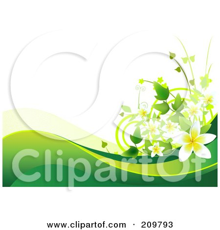 Flower Prints on Of A Plumeria Flower Background With Green Waves Over White By Pushkin