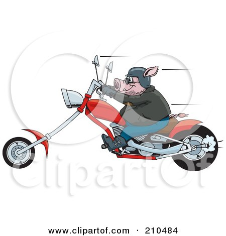 Royalty-Free (RF) Clipart Illustration of a Tough Hog Riding A Red Chopper Motorcycle And Speeding Past by Dennis Holmes Designs
