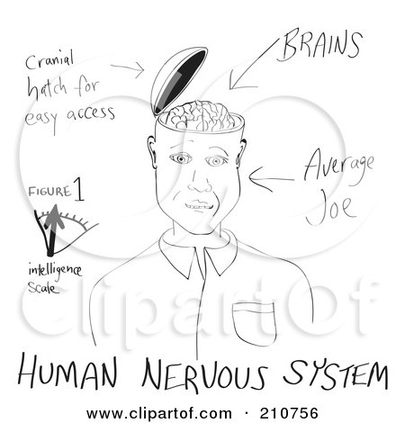 Black And White Sketch Of A Brain Hatch Posters, Art Prints