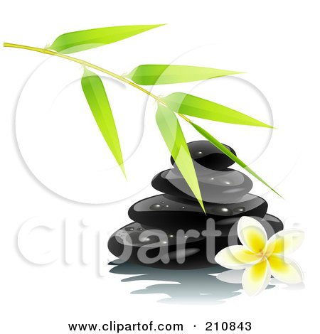 Royalty-Free (RF) Clipart Illustration of a Bamboo Branch Over Shiny Black Spa Stones And A Frangipani Flower by Oligo