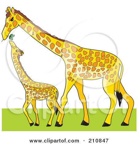 Royalty-Free (RF) Clipart Illustration of a Tall Mother Giraffe Holding A Branch To Feed Her Baby by Maria Bell