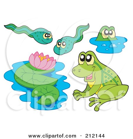 Royalty-Free (RF) Clipart Illustration of a Digital Collage Of Frogs, Lily Pads And Tadpoles by visekart