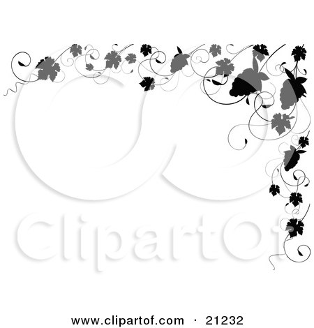 Clipart Illustration of an Elegant Black And White Border Of Silhouetted Grapes And Grapevines On A White Background by elaineitalia