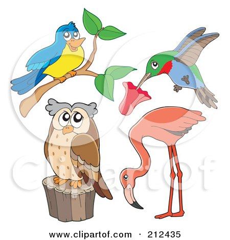 Royalty-Free (RF) Clipart Illustration of a Digital Collage Of A Bird, Hummingbird, Flamingo And Owl by visekart