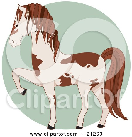 Clipart Illustration of a Prancing White And Brown Pinto Horse In Profile Over A Green Circle by Maria Bell