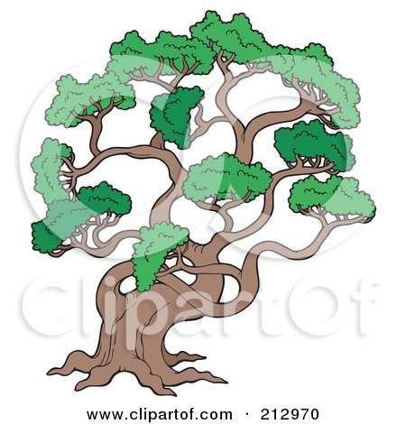 Royalty-Free (RF) Clipart Illustration of a Large Pine Tree by visekart