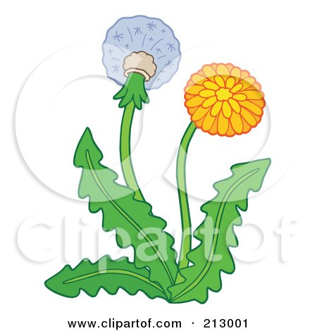 Royalty-Free (RF) Clipart Illustration of a Dandelion Plant With A Flower And Seedhead by visekart