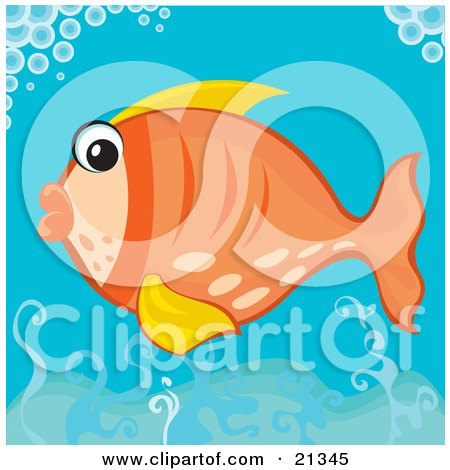Clipart Illustration of a Surprised Orange Fish With Yellow Fins, Swimming Under Bubbles In The Ocean by Paulo Resende