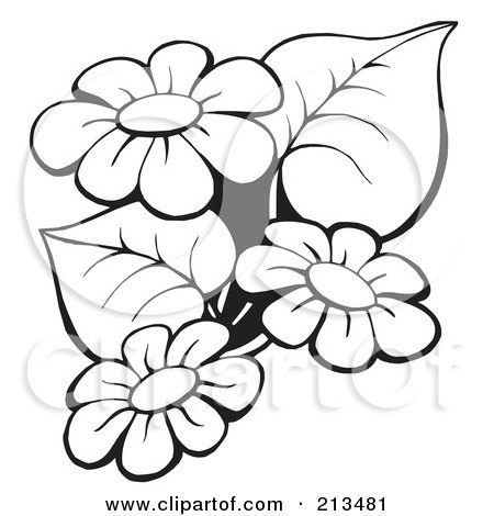 Germinating seed likewise 1214809 Royalty Free Brain Clipart Illustration in addition 1114491 Royalty Free Tamarind Clipart Illustration as well Bandit likewise Black And White Praying Virgin Mary Facing Right 1292977. on mascots