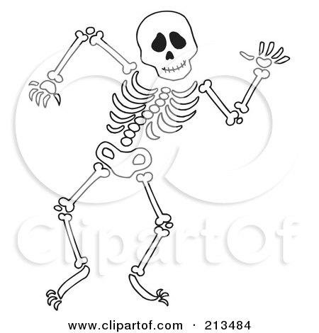 human skeleton drawing. printable skeleton drawing