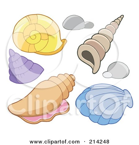 Royalty-Free (RF) Clipart Illustration of a Digital Collage Of Sea Shells by visekart