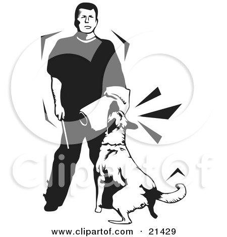 Clipart Illustration of a Guard Dog In Training, Attacking The Padded Arm Of A Trainer Man, On A White Background by David Rey