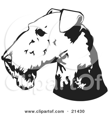 Clipart Illustration of an Airedale Terrier Dog's Head In Profile, Facing To The Left by David Rey