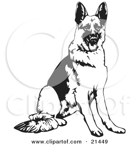 Clipart Illustration of a German Shepherd Guard Dog Growling In ...