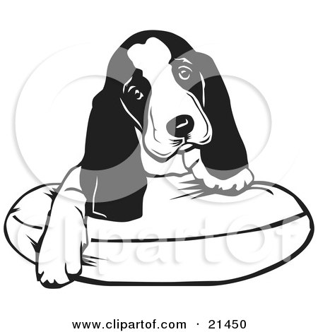 Clipart Illustration of an Adorable Basset Hound Puppy Dog With Long Ears, Sitting On A Dog Bed And Tilting His Head Curiously by David Rey