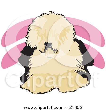 Clipart Illustration of a Shaggy Brown And Black Old English Sheepdog, Or Dulux Dog, Lying Down And Facing Front by David Rey