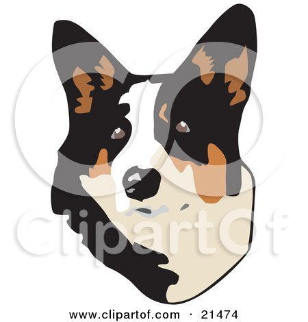 Clipart Illustration of a Cute Brown, White And Black Welsh Corgi Dog Looking Upwards, On A White Background by David Rey