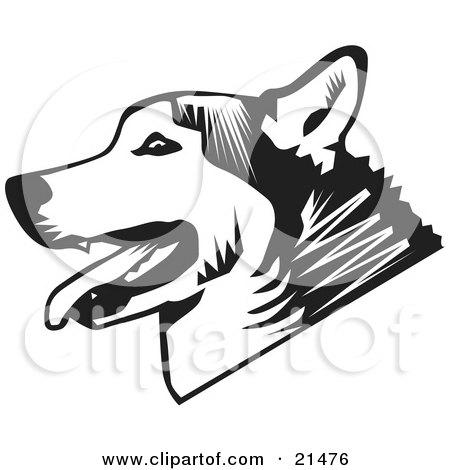 Clipart Illustration of a Panting Husky Dog In Profile, Over A White Background by David Rey