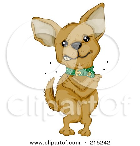 Cute Chihuahua Standing And Itching Fleas Posters, Art Prints
