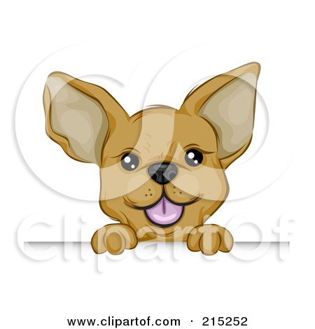 Cute Chihuahua Puppy Looking Over A Board Posters, Art Prints
