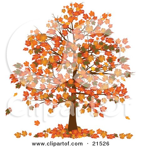 Clipart Illustration of an Autumn Tree With Vibrantly Colored Orange And Yellow Fall Leaves On The Branches And On The Ground Below by elaineitalia