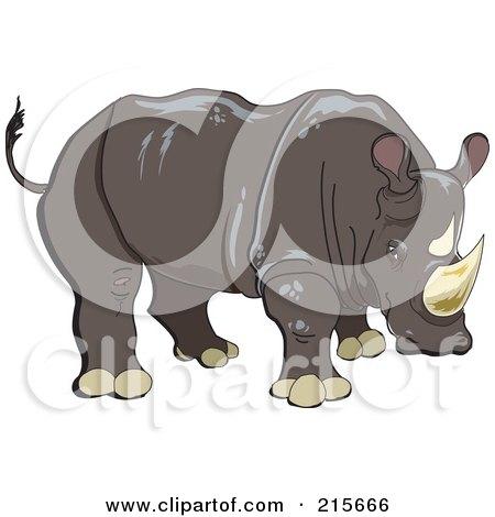 Brown Rhinoceros Posters, Art Prints