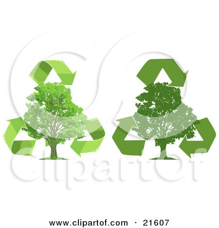 Clipart Illustration Graphic of Green Recycle Arrows Circling Around Lush Green Trees, One Silhouetted, Over A White Background by Tonis Pan