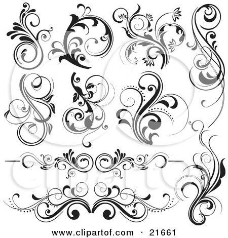 Collection Of 10 Floral Vines And Flourishes In Black And White Posters, Art Prints